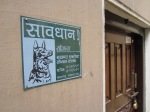Beware of the Dog - Patan