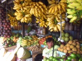 HFHI Global Village, Quezon City, Manila, Philippines – Filipino Fruits