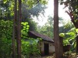 HFHI Global Village, Dambulla, Sri Lanka – Week 2 – Work Days 7 &8