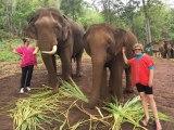 RTW in 50 Days – THAILAND, The LannaKingdom