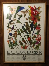 ECUADOR – Two Nights in Mindo