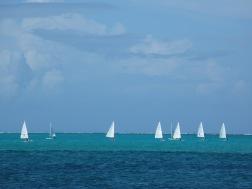 Sailing Anyone?