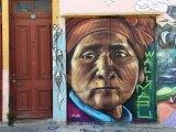 CHILE | Santiago, Valparaiso &Casablanca